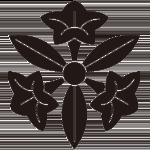 三つ葉桔梗紋